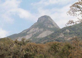 Mount_Longido