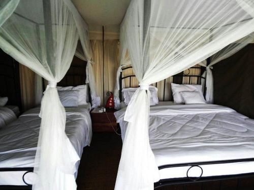 Serengeti Heritage Tented camp 44